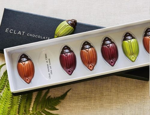 West Chester Chocolatier 'Eclat' Earns Acclaim As One Of The Best